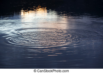 Water circles in the lake