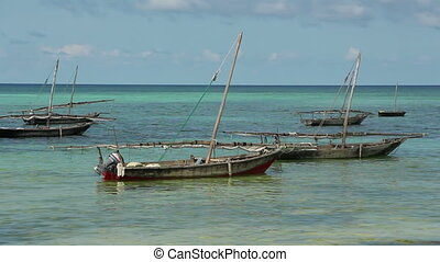 Zanzibar dhows - Traditional wooden sail boats dhows...