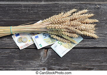 wheat ripe  ears bunch with euro money banknotes isolated on white