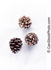 christmas pine cones with white border