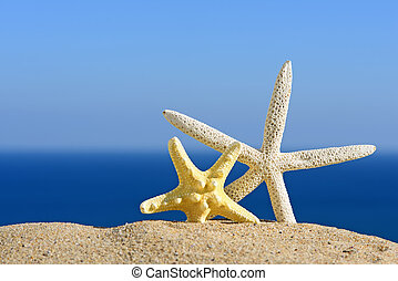 Color starfishes on sandy beach, travel concept