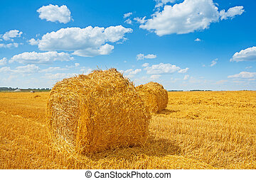 bales of straw on harvested field and beauti cloudy sky