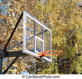 basketball board in autumn
