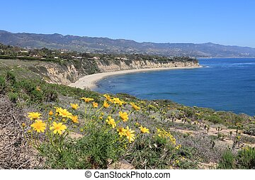 Malibu - California, United States - Pacific coast view in...