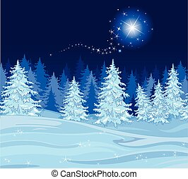 Shutting star over a fir tree forest