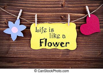 amarillo, etiqueta, Refrán, vida, es, como, Un, flor,...