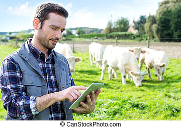 Young attractive farmer using tablet in a field - View of a...