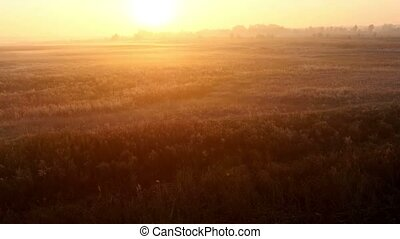 Sunrise over the meadow in a foggy autumn day Aerial shot -...