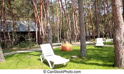 Relaxation area in the forest.