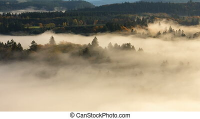 Time Lapse of Thick Rolling Fog - Time Lapse Movie of...