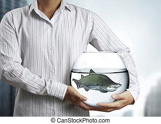 shark in aquarium hand