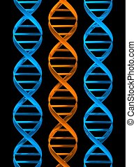 model of dna - 3d rendered illustration of three double...