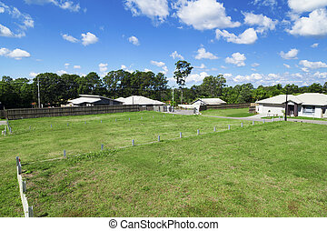 Housing development area. - Sunny, green Australian housing...