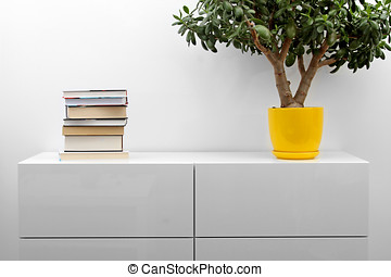 white commode with stack of books and flower pot in bright...