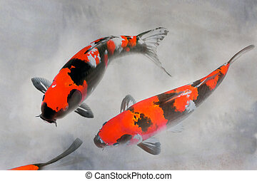 Calico Koi Fish Watercolor Illustration - Calico Koi Fish...