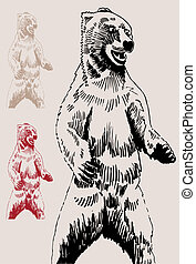 Bear Drawing on brown background.