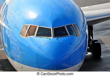 passenger,  airplane, näsa
