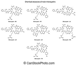 Main microcystins - cyanotoxins - Chemical structural...