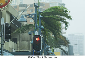 Cyclonic weather in the city