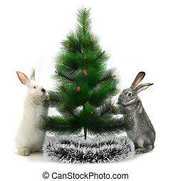 Christmas rabbit - Adorable Christmas rabbits under the tree...