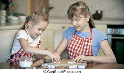 Cooking Fun - Two girls preparing bakery in the kitchen