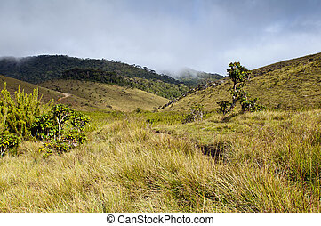 Horton Plains National Park Sri Lanka - The landscape with...