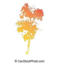 vector drawing silhouettes of old deciduous tall tree