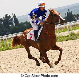 The winner - Action shot of jockeys in horse race in...