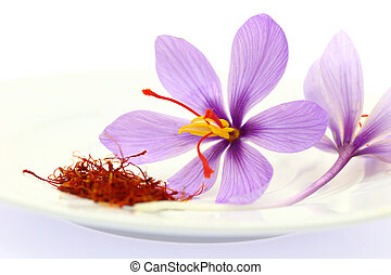 Close up of saffron flower and dried saffron spice
