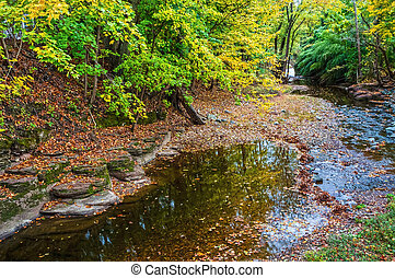 Autumn Creek - Nishisakwick Creek as it passes through...