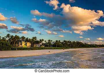 View of the beach from the fishing pier in Naples, Florida....