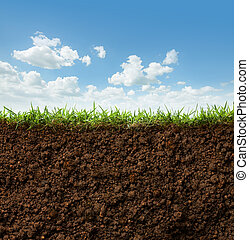 grass and soil - cross section of grass and soil against...