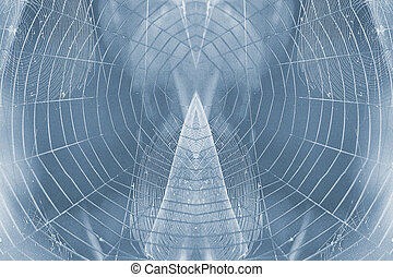 Spiderweb - Spider web backgrounds with visiable grain