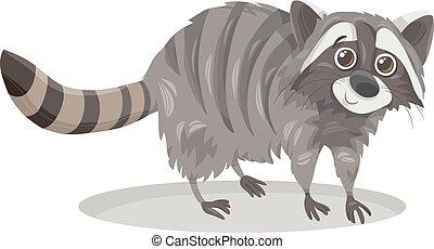 raccoon animal cartoon illustration