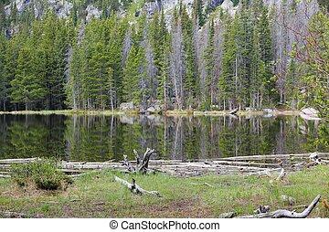 Bear Lake, Colorado - Rocky Mountain National Park in...