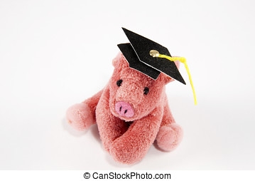 Pink pig with college mortar board on white