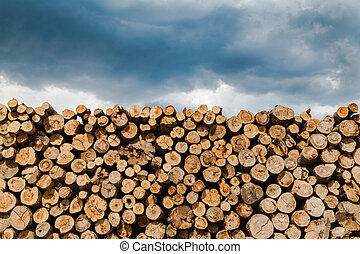 Industrial Timber - Log and wood piles in industrial timber...