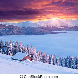 Colorful winter morning in the mountains - Colorful winter...