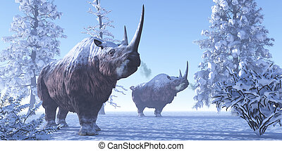 Woolly Rhino males keep each other company during a snowy...