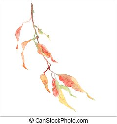 Green leaves on branch. Watercolor botanical vector