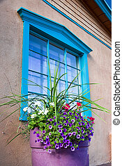 Flowers in Front of a Santa Fe Gallery Window - Unique blue...