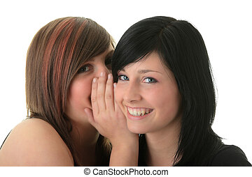 Two happy young girlfriends talking over white - Two happy...