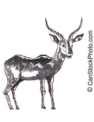 antelope - the antelope painting ,on paper