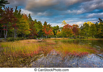 Autumn color at Eagle Lake, in Acadia National Park, Maine.