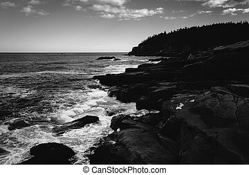 Otter Cliffs and the Atlantic Ocean in Acadia National Park,...
