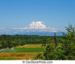 Mount Rainier and farm captured from the end of the Yelm,...