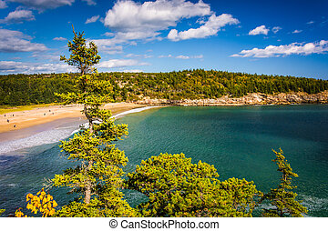 View of the Sand Beach at Acadia National Park, Maine.