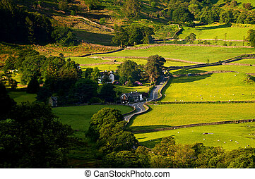 Borrowdale Valley - Borrowdale valley in the English Lake...