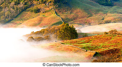 Borrowdale - Morning mist in Borrowdale in the English Lake...