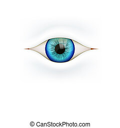 Background with human eye - Illustration of White Background...